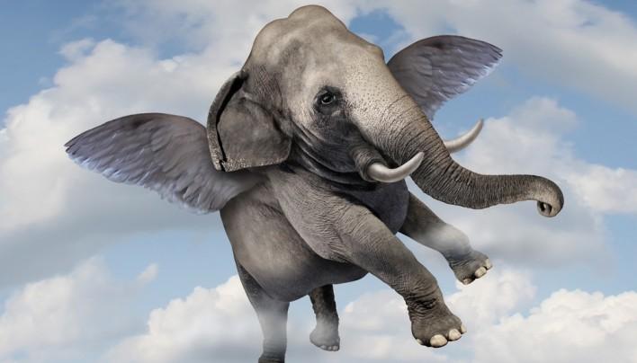 MOJE SREDE: Koliko več lahko skreiraš, če iz muhe ne delaš slona?