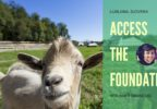 TEMELJI Access Consciousness s Harisom